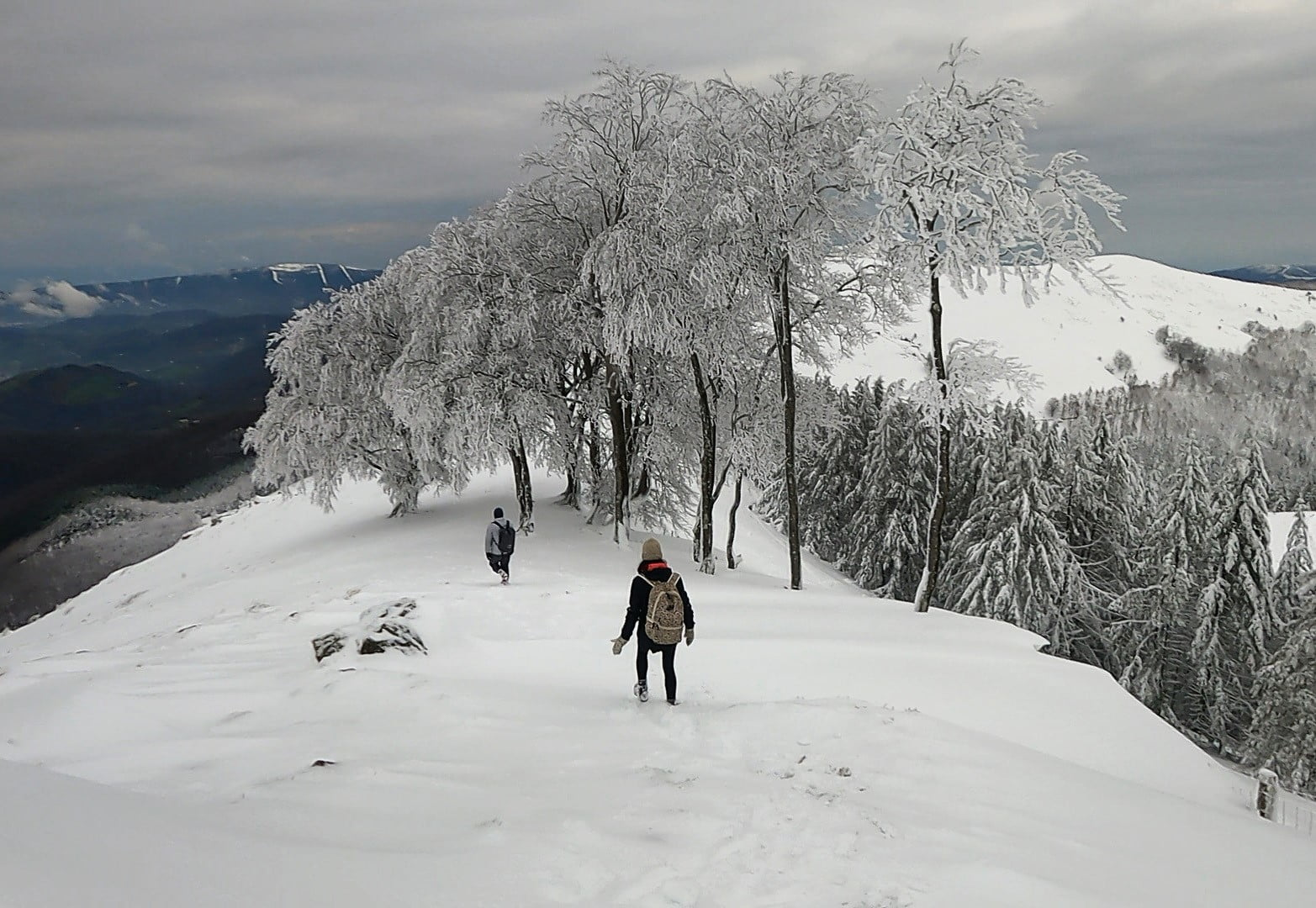 hiking down summit in snow with snow covered trees